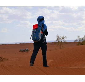 WildSeat tapis tout terrain rando desert